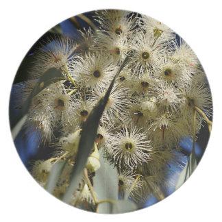 Flowering Eucalyptus Tree Dinner Plates