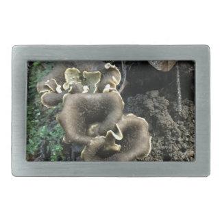 Flowering Mushrooms Belt Buckle