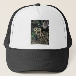 Flowering Mushrooms Trucker Hat