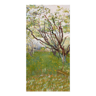 Flowering Orchard by Vincent Van Gogh Picture Card