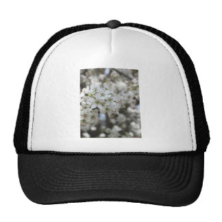 Flowering Pear Tree Bloom Mesh Hats
