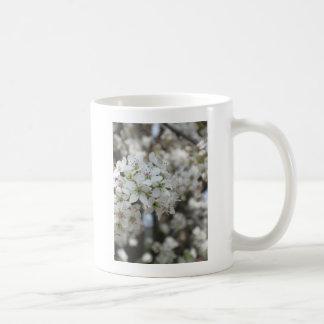 Flowering Pear Tree Bloom Coffee Mug