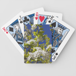 Flowering Pear Tree Playing Cards