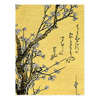 Flowering Plum Postcard