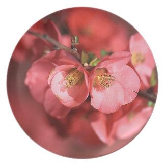 Flowering Quince Melamine Plate