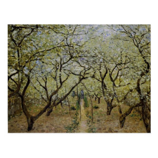 Flowering Trees Postcard