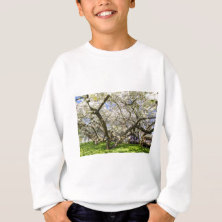 Flowering trees with white blossom in spring sweatshirt