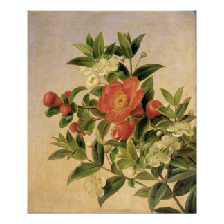 Flowers, 1835 poster