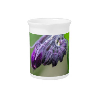 Flowers and blossoms of common comfrey drink pitchers
