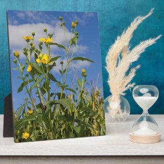 Flowers and Cornfield in Iowa Photo Plaque