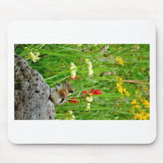 Flowers and cute cubby little Chipmunk Mousepads