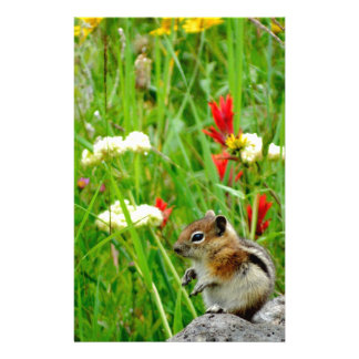Flowers and cute cubby little Chipmunk Stationery