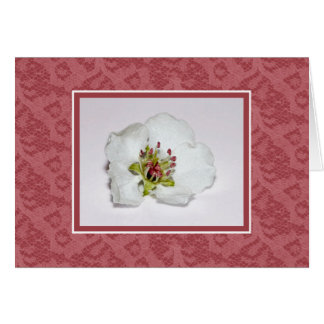 Flowers And Lace Blank Note Card Cherry Blossom