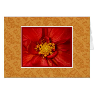 Flowers And Lace Blank Note Card Orange Dahlia