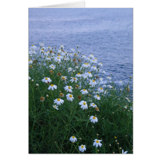 Flowers and ocean card