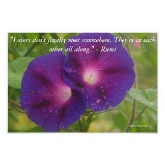 Flowers and Rumi quote Photo Print