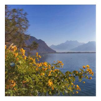Flowers at Geneva lake, Montreux, Switzerland Acrylic Wall Art
