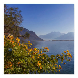 Flowers at Geneva lake, Montreux, Switzerland Poster