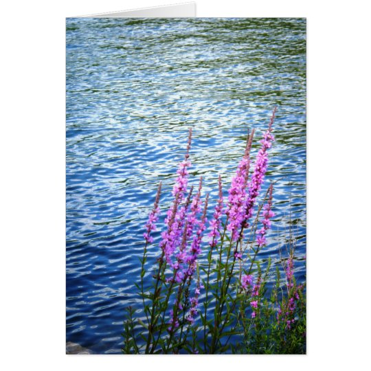 """""""Flowers at Long Pond"""" Card"""