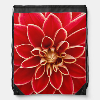 Flowers Blossoms Flowers Red Dahlias Backpacks