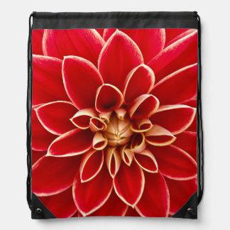 Flowers Blossoms Flowers Red Dahlias Rucksack