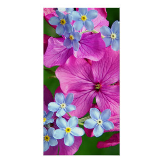 Flowers Bouquet Poster