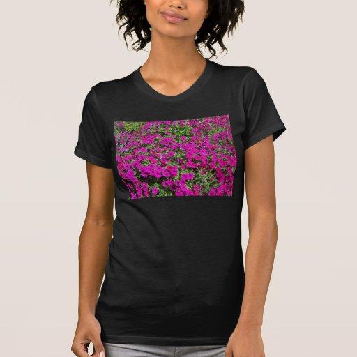 Flowers Brilliant Burst T-shirt