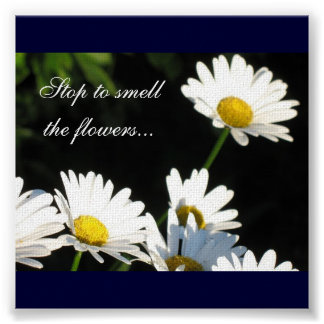 Flowers Canvas Art Poster