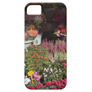 flowers displayed for sale in the Campo de' iPhone 5 Cover