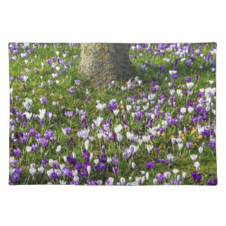 Flowers field crocuses in spring grass with tree placemat