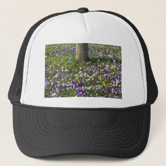 Flowers field crocuses in spring grass with tree trucker hat
