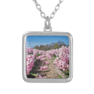 Flowers field with pink hyacinths in Holland Silver Plated Necklace