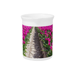 Flowers field with purple tulips and path drink pitchers