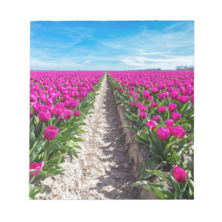 Flowers field with purple tulips and path notepad