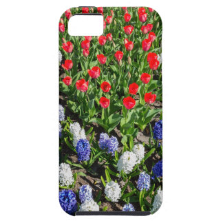 Flowers field with red blue tulips and hyacinths iPhone 5 case