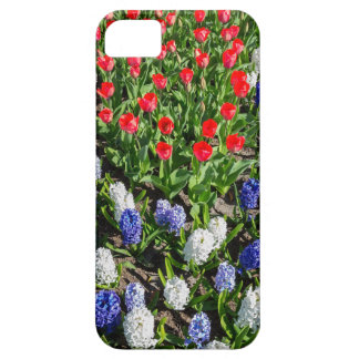 Flowers field with red blue tulips and hyacinths iPhone 5 cases