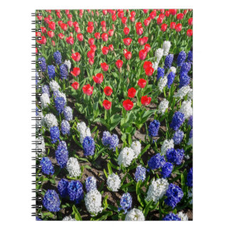 Flowers field with red blue tulips and hyacinths notebook
