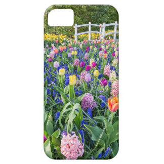 Flowers field with tulips hyacinths and bridge iPhone 5 case