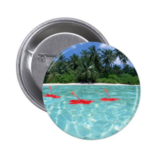 Flowers Floating in Water Buttons