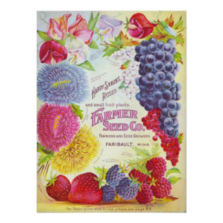 Flowers & Fruit Vintage Catalog Cover Print