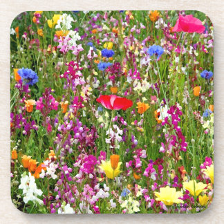 """Flowers Galore"" Coaster Set"