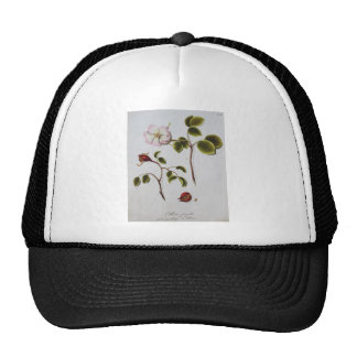 Flowers Hats