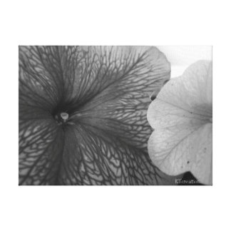 Flowers in Black & White Canvas Print