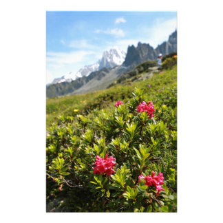 Flowers in the Alps - Beautiful! Stationery Design