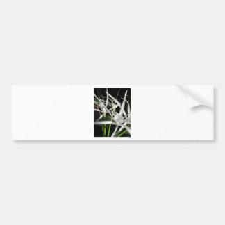 Flowers in the Dark Car Bumper Sticker