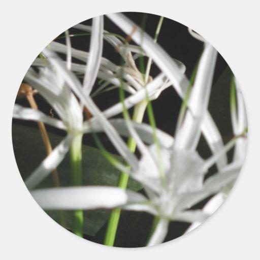 Flowers in the Dark Round Sticker