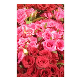 Flowers in the Philippines, pink and red roses Stationery