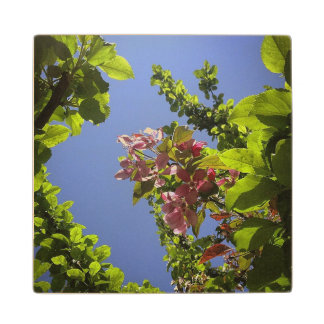 Flowers In The Sky Maple Wood Coaster