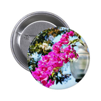 Flowers Lamps Posts Lights Pinback Button