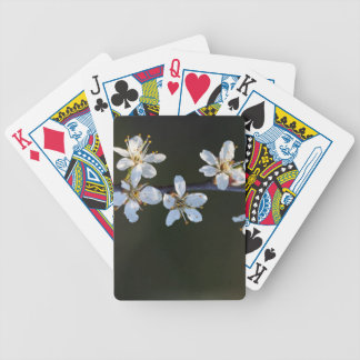 Flowers of a Blackthorn bush Bicycle Playing Cards